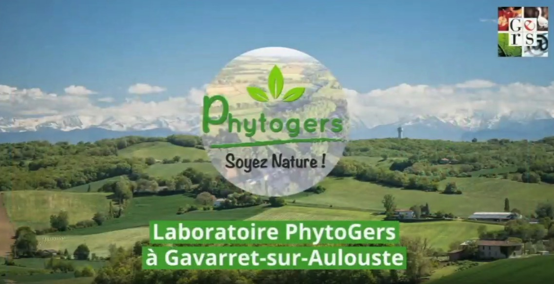 phytogers-septuors-cover